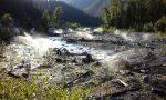 Pulse: A Story of River Restoration